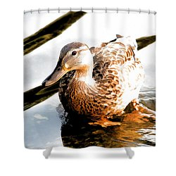 Contemplation Shower Curtain by Mariola Bitner