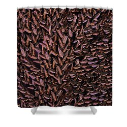 Copper Leaf Shower Curtain by David Dehner