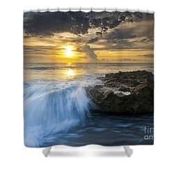 Coral Cove Shower Curtain by Bruce Bain