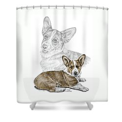 Shower Curtain featuring the drawing Corgi Dog Art Print Color Tinted by Kelli Swan