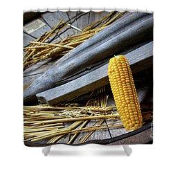 Corn Cob Shower Curtain by Carlos Caetano