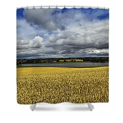 Corn Field Panorama Shower Curtain by Heiko Koehrer-Wagner