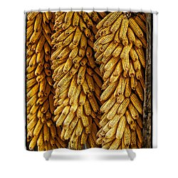 Corn  Shower Curtain by Mauro Celotti