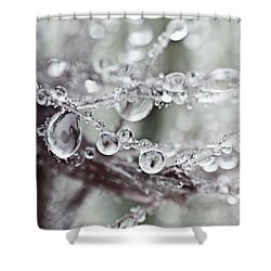 Corned Jewels Shower Curtain
