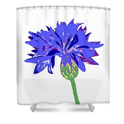 Shower Curtain featuring the digital art Cornflower by Barbara Moignard