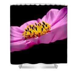 Cosmia Flower Shower Curtain by Sumit Mehndiratta