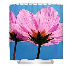 Cosmia Flowers Pair Shower Curtain by Sumit Mehndiratta