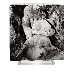 Count Of Monte Cristo, 1934 Shower Curtain by Granger
