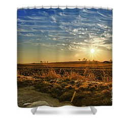 Country Light Shower Curtain