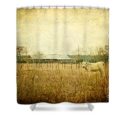 Cow Pasture Shower Curtain by Joan McCool