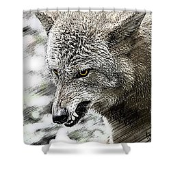 Coyote Snarling Shower Curtain by Dan Friend
