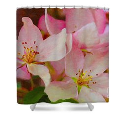 Crabapple Floral Paint Shower Curtain by Donna Munro