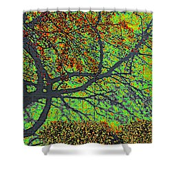 Crabapples West Acid Pop Shower Curtain by Feile Case