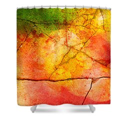 Cracked Kaleidoscope Shower Curtain by Silvia Ganora
