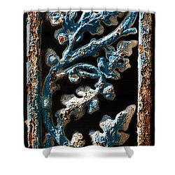 Crackled Coats Shower Curtain by Christopher Holmes