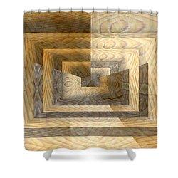 Cracks In The Veneer Shower Curtain by Tim Allen