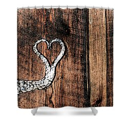 Shower Curtain featuring the photograph Crafted Heart by Michelle Joseph-Long