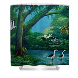 Cranes On The Swamp Shower Curtain