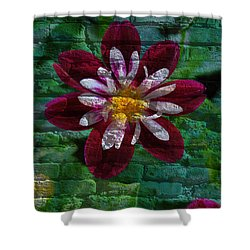 Crazy Flower Over Brick Shower Curtain by Eric Liller