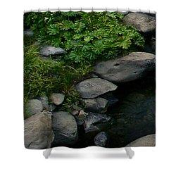 Creek Flow Panel 2 Shower Curtain by Peter Piatt