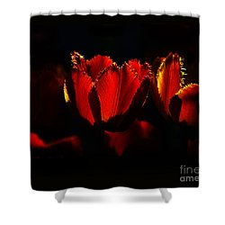 Crinkle Tulips Shower Curtain