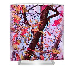 Crisp Autumn Day Shower Curtain by Judi Bagwell