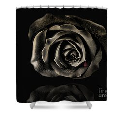 Crying Black Rose Shower Curtain by Danuta Bennett