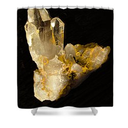 Crystal On Black Shower Curtain by Joyce Dickens
