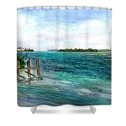 Shower Curtain featuring the painting Cudjoe Bay by Clara Sue Beym