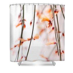 Curtain Shower Curtain by Priska Wettstein