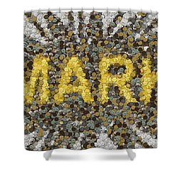Custom Mark Mosaic Coins Shower Curtain by Paul Van Scott