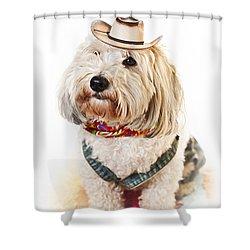 Cute Dog In Halloween Cowboy Costume Shower Curtain by Elena Elisseeva
