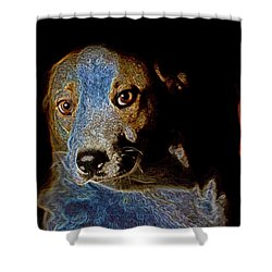 Cutie Shower Curtain by One Rude Dawg Orcutt