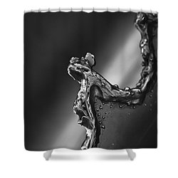 Shower Curtain featuring the photograph Cutting Edge Sibelius Monument by Clare Bambers