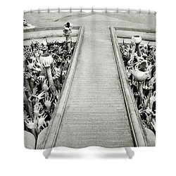 Cycle Of Rebirth At Wat Rong Khun In Thailand Shower Curtain by Shaun Higson