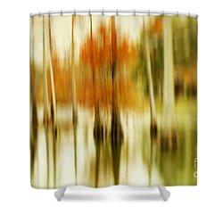Cypress Morning Shower Curtain by Scott Pellegrin
