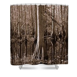 Cypress Swamp Reflection In Sepia Shower Curtain by Carol Groenen