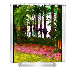 Shower Curtain featuring the photograph Cypress With Oxalis by Judi Bagwell