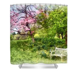 Daffodils By Bench Shower Curtain by Susan Savad