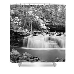 Dainty Waterfall Shower Curtain by David Troxel