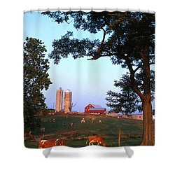 Dairy Farm Shower Curtain by Photo Researchers
