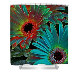 Daisies From Another Dimension Shower Curtain by Rory Sagner
