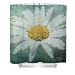 Daisy Shower Curtain by Dawn OConnor