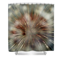 Dandelion Fluff Shower Curtain by Kay Lovingood