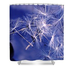 Dandelion Seeds Floating On Water Shower Curtain by Kaye Menner