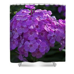 Shower Curtain featuring the photograph Dappled Light by Joseph Yarbrough