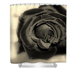 Shower Curtain featuring the photograph Dark Beauty by Kay Novy