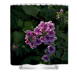 Shower Curtain featuring the photograph Dark by Joseph Yarbrough