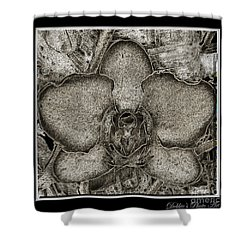 Dark Orchid Shower Curtain by Debbie Portwood