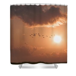 Dawn Flight Shower Curtain